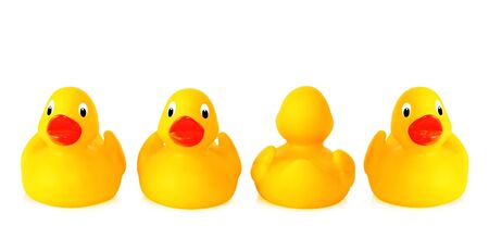 Dare to be different - a row of yellow rubber ducks, with one turning its back.  Isolated on white. photo