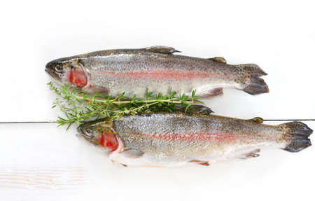 Two fresh rainbow trout on white weathered timber, with herbs. Stock Photo - 2529946