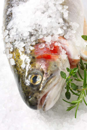 Rainbow trout encrusted with sea salt, ready for cooking.  With fresh rosemary and thyme. Stock Photo - 2529947