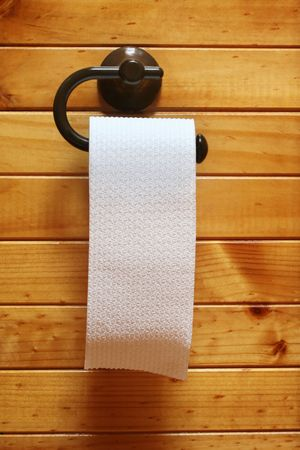 Roll of toilet paper on polished timber bathroom wall. photo