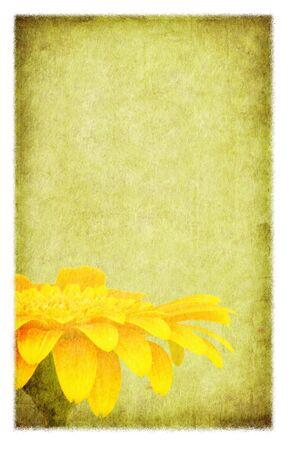 rundown: Yellow gerbera daisy, on grunge background.  Photo-based illustration. Stock Photo