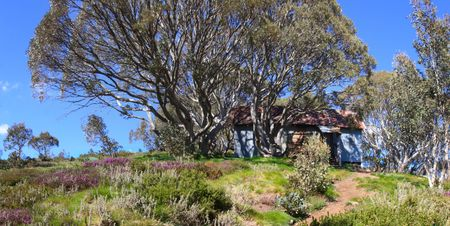 cope: Cope Hut, Falls Creek, Victoria, Australia.  Glorious spring day in the Victorian Alps.  Old skiers refuge hut.