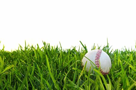 dewy: Old baseball in dewy grass, with white background. Stock Photo