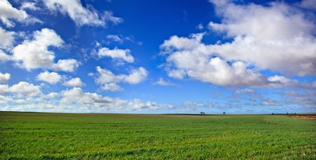 Panorama of a lush green meadow and blue sky with fluffy white clouds. Stock Photo - 5366413
