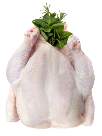 Whole raw chicken, stuffed with herbs ready for roasting.  Overhead view, isolated on white. photo