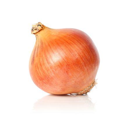 Una cipolla marrone, isolata su sfondo bianco con la riflessione.