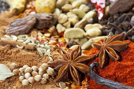 Too many spices to count!  Star anise, paprika, cardamom, coriander, vanilla bean, cloves, turmeric, curry powder, chili pepper, ginger, etc. photo