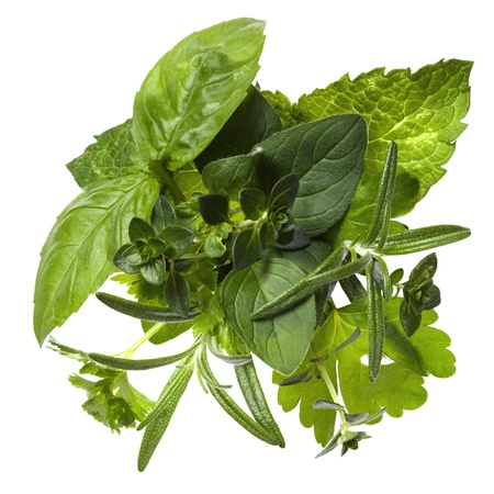 Bouquet garni. Fresh herbs including basil, rosemary, parsley, mint, oregano and thyme, over white background.