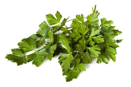 parsley: Flat-leaf parsley, isolated on white background.  Fresh-picked from my garden, with raindrops.