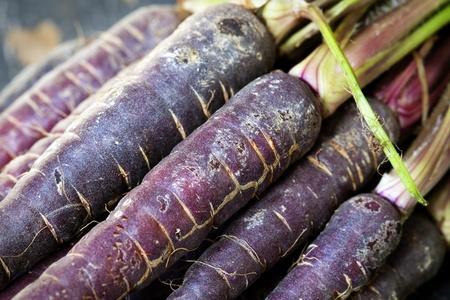 heirloom: Purple heirloom carrots from a farmers market, in closeup. Very high in antioxidants.