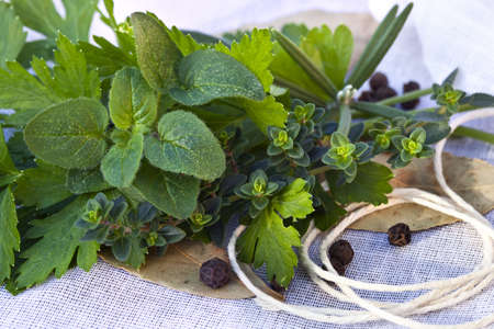 peppercorns: Bouquet garni of fresh herbs and peppercorns, on muslin ready for tying.