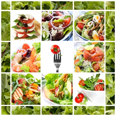 Collage of healthy salads.  Includes caprese, Greek, Waldorf, shrimp, smoked salmon, Nicoise, chicken, and garden salads. photo
