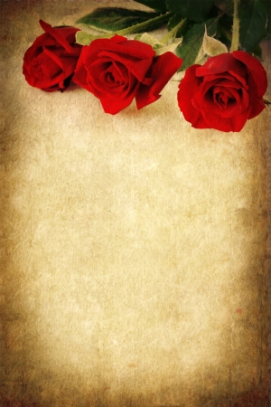 Three red roses over a grunge background.  Lots of copy space. photo