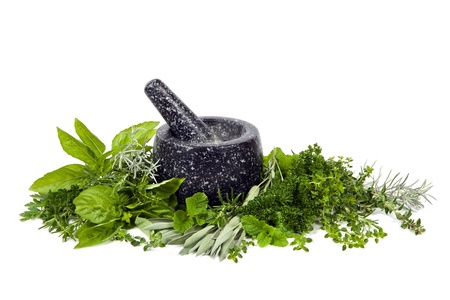 Black mortar and pestle with fresh picked herbs, over white background  photo
