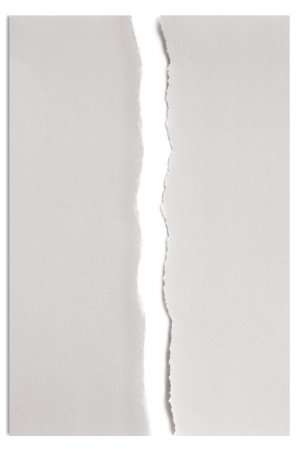 White paper torn in half over white with soft shadow. Stock Photo