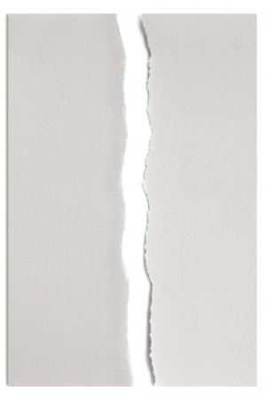 gescheurd papier: Wit papier in tweeën gescheurd over wit met zachte schaduw.