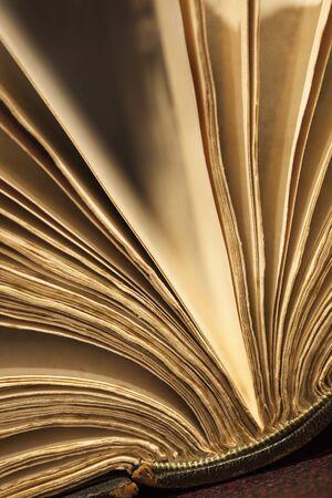 fanned: Old book fanned open.  Warm light, shallow depth of field.
