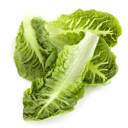 Romana o lechuga romana hojas de lechuga, aislados en blanco.