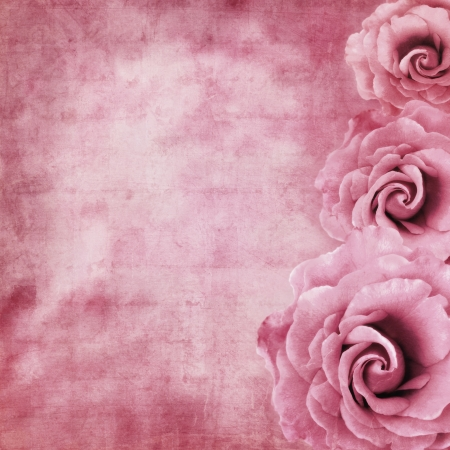 Grunge background with lavender roses