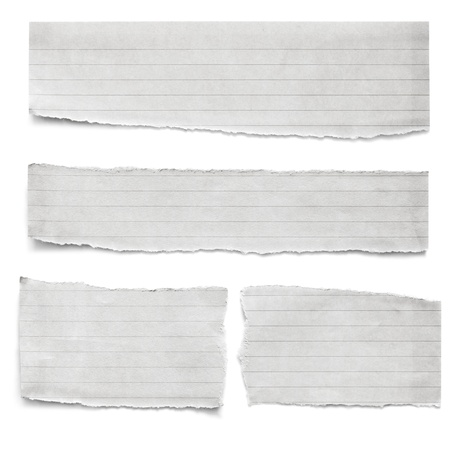 Collection of torn lined paper pieces, isolated on white
