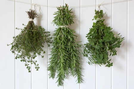 Bunches of fresh herbs hanging over white timber.  Includes thyme, rosemary and oregano. photo