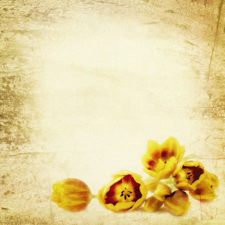 Golden tulips with grunge textured effects. photo