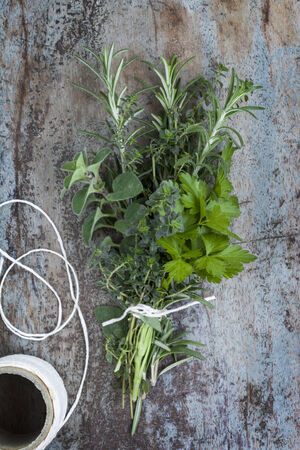 Bouquet garni of fresh herbs, tied with twine. Rosemary, thyme, oregano, parsley. Stock Photo