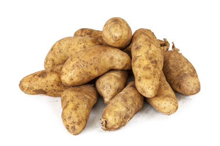 unwashed: Unwashed fingerling o Kipfler patate crude, isolato su sfondo bianco.