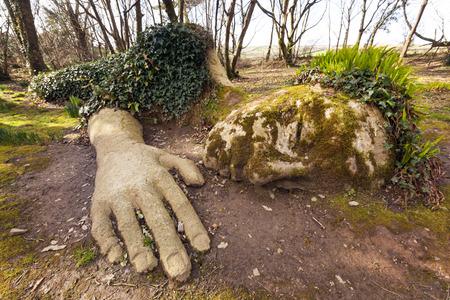 ロスト ガーデンズ オブ ヘリガン、コーンウォール、イングランドで泥乙女。