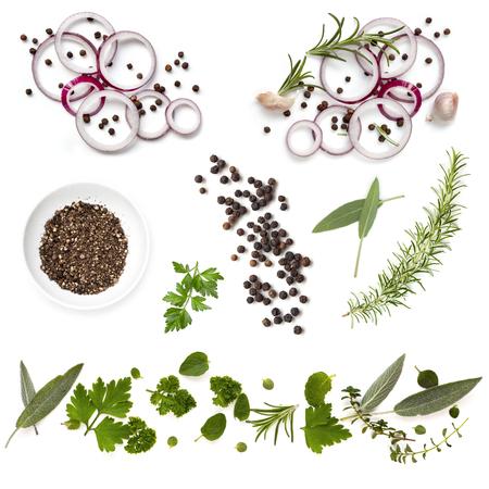 herbs: Colección del alimento de fondo con cebolla, hierbas y granos de pimienta, todos los aislados en blanco. Vista de arriba.