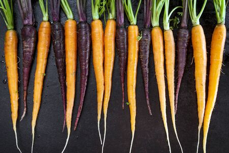 directly above: Baby carrots, orange and purple, in a row over black iron background.  Horizontal top view. Stock Photo