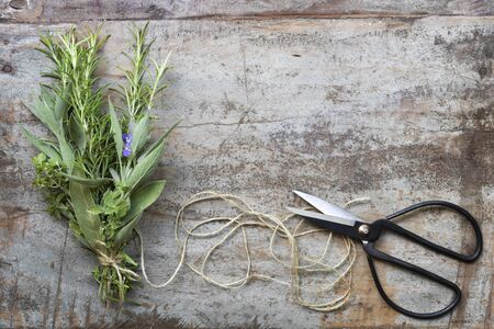 Bouquet garni of fresh herbs with twine and scissors. Top view over grunge timber background.