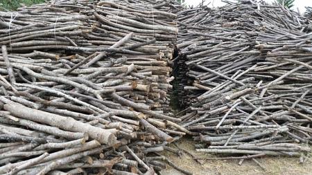 woodburning: wood-burning oven Stock Photo