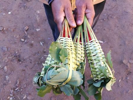 Walking sells berries nellourika valley