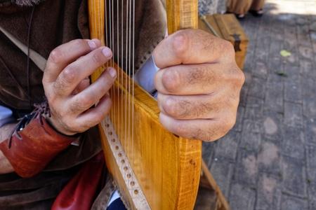 lyre medieval musical instrument
