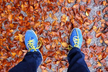 my legs between dry leaves