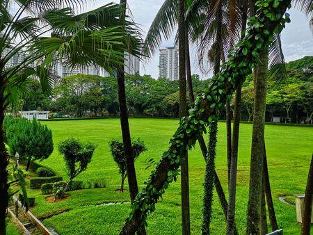 green park among the skyscrapers of kuala lumpur