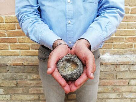 empty bird nest in hands