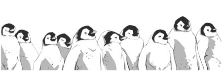 Illustration of young cute penguin chicks standing in a row Illustration