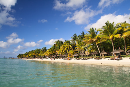 Tropical beach with palm trees, Mauritius