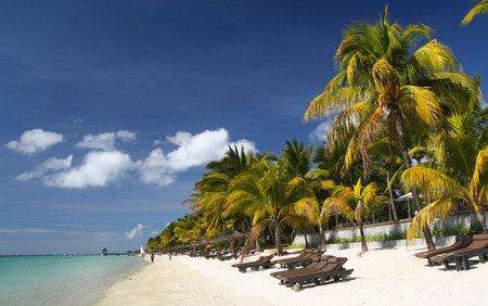 Tropical beach with palm trees and sun beds, Mauritius