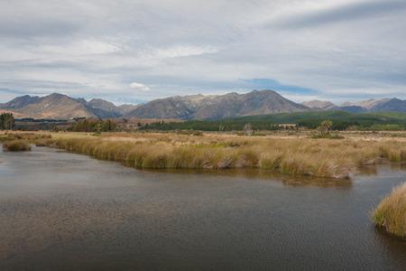 wetlands: Wetlands  landscape
