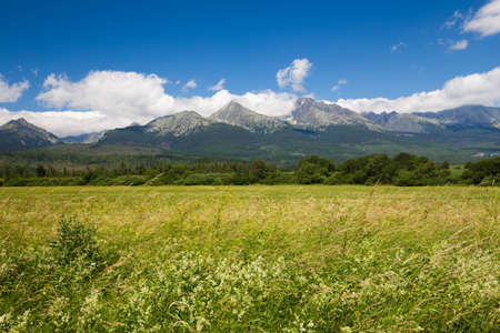 tatra: View of the Mountain - landscape