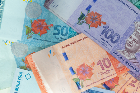 View of the Malaysian money / ringgit