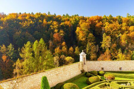 European forest in autumn colors  landscape