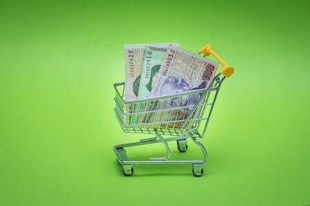 Miniature shopping trolley with Argentinian money. The concept of shopping and the power of the economy