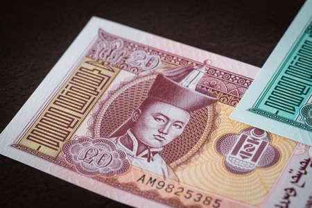 Mongolia currency, Twenty Tugrik banknote 免版税图像