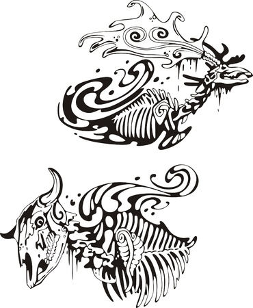 Animal skeletons Stock Vector - 13572173