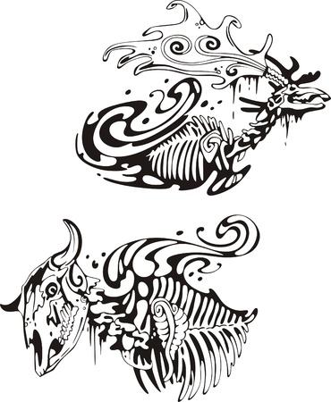 Animal skeletons Stock Vector - 13572173