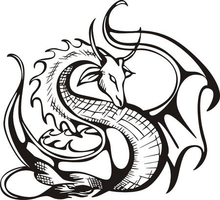 dragon tattoo: Raising dragon  Black and white vector illustration Illustration